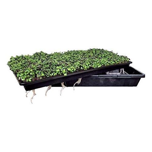 Microgreen Trays 5 Seed Tray - Gro